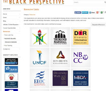 Resource Network on The Black Perspective
